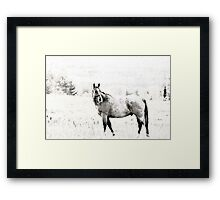 Call of the Wild - Version 2 Framed Print