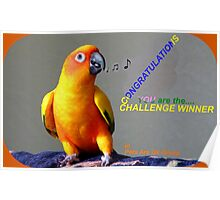 CONGRATULATIONS - Challenge winner - Pets Are Us Poster