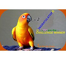 CONGRATULATIONS - Challenge winner - Pets Are Us Photographic Print