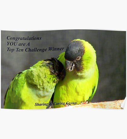 CONGRATULATIONS! - Top 10 Challenge Winner - Sharing & Caring Poster
