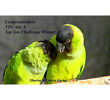 CONGRATULATIONS! - Top 10 Challenge Winner - Sharing & Caring Photographic Print