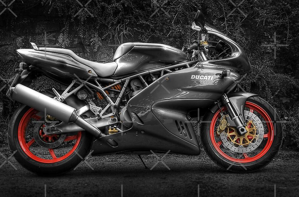 Ducati 1000DS by Paul Shellard