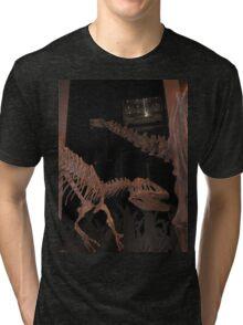 Beautiful Saurophaganax Tri-blend T-Shirt