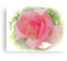 Sweet and Pink Canvas Print