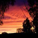 Sunrise Glory by Rick Playle