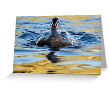 """Water Off A Ducks Back"" Greeting Card"