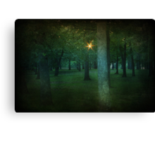 A Light To Guide Me Canvas Print