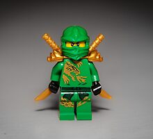 Ninjago Warrior by garykaz