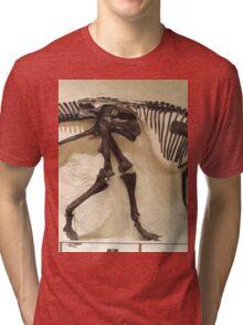 Strong Maiasaura Tri-blend T-Shirt