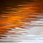 Orange Water by Tiffany Dryburgh