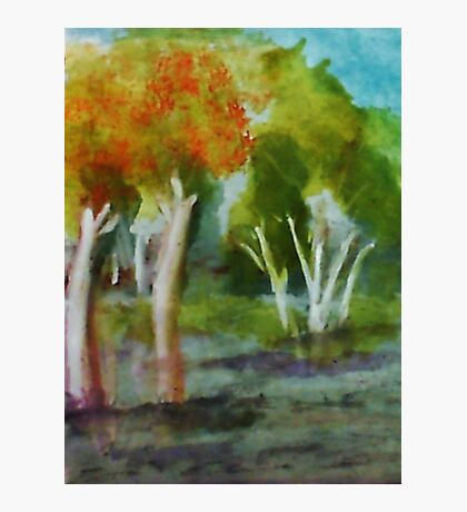 Summer trees, watercolor Photographic Print