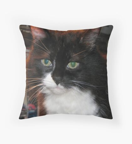 Cici I Throw Pillow