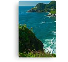 Heceta Head Viewpoint Canvas Print