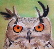 Windblown Owl by Melissa Raposa