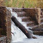 Weir Crossing by Dave Callaway