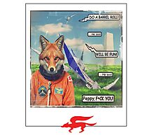 fox roll Photographic Print