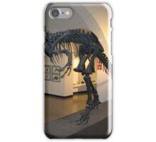 Ancient Allosaurus iPhone Case/Skin