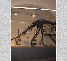 Unbelievable Allosaurus Unisex T-Shirt