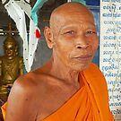 Buddhist monk, Wat Hanchey, Cambodia. by John Mitchell