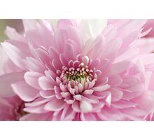 Love you Mum Photographic Print