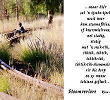 Stoomverlore by Rina Greeff