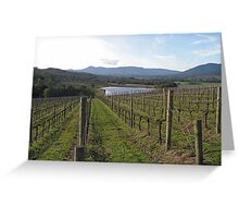 Syme Vineyard Greeting Card