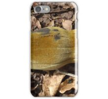 baobab tree fruit iPhone Case/Skin
