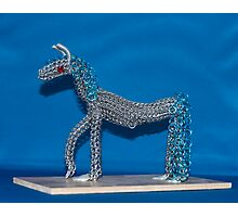 Chainmaille Horse Photographic Print