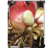 Cannon Ball tree flower iPad Case/Skin