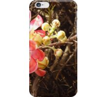 Cannon Ball tree flower iPhone Case/Skin