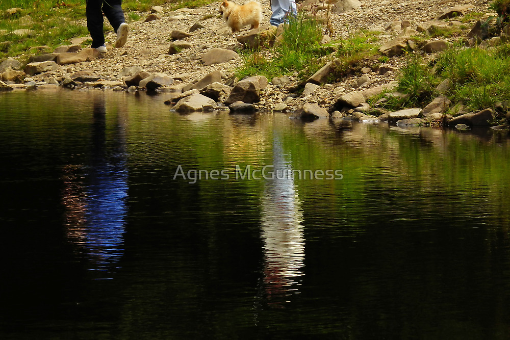 Disappointment by Agnes McGuinness