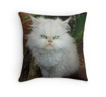 "Princess Kendra,  ""With Major Cattitude""  Throw Pillow"