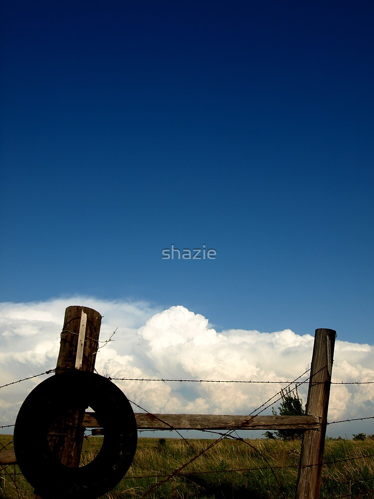 Wire and White by shazie