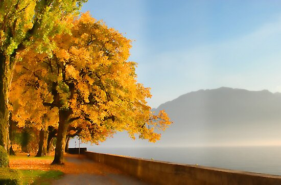 autumn on lake side, beautiful landscape by Riviera