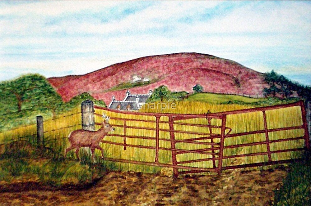 Cottage on the Hill by sharpie