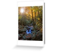 AUTUMN EVENING,ROARING FORK Greeting Card