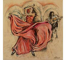 Flamenco Rapido Photographic Print