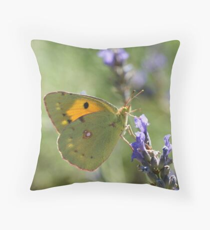 Clouded Yellow Throw Pillow