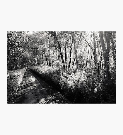 Ghostly Road Photographic Print