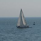 SAILING by Lee d'Entremont