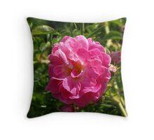 Pink Beach Rose Throw Pillow