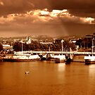 View over River Lagan, Belfast by Chris Millar