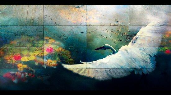 On Silent Wings by Aimee Stewart
