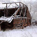 Rustic Barn by David Kocherhans