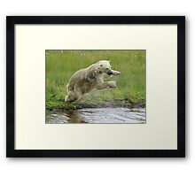 """""""Hey this is fun 3"""" Framed Print"""