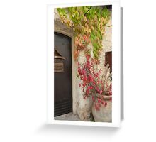 Virginia Creeper in Terracotta Pot Greeting Card