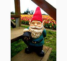 Flower Steps Gnome Unisex T-Shirt