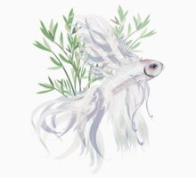 White Siamese Fighting Fish by Lotacats