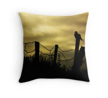 Skywatcher Throw Pillow
