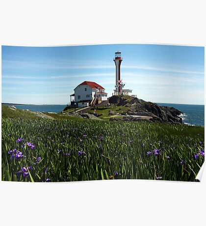 Cape Forchu Lighthouse and Irises  Poster